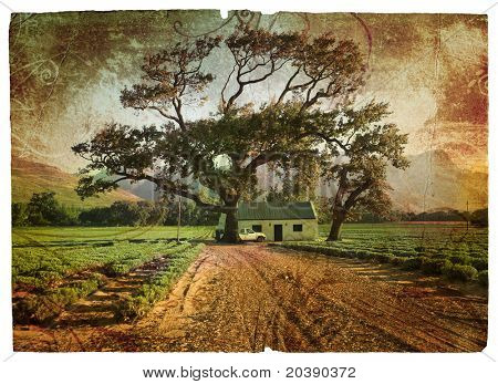 Grunge illustration of green lavender fields with an oak tree next to a farm house with a car.