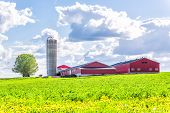 Landscape View Of Farm In Ile Dorleans, Quebec, Canada With Red Harvest Or Crop Storage Silo Buildi poster