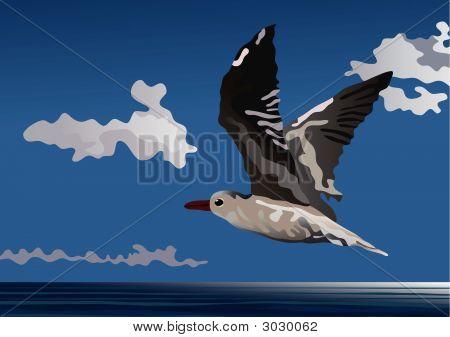 Vuelo libre de gaviota. Una ilustración del Vector