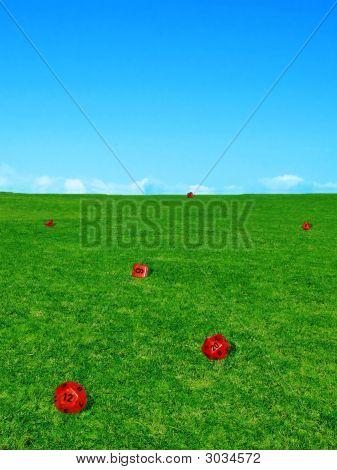 Gaming Dice In Grassy Field