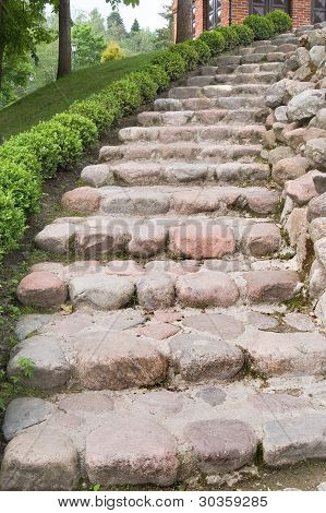 Natural Stone Steps Along A Hedgerow