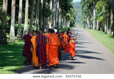 Buddhism Children Monks In A Park