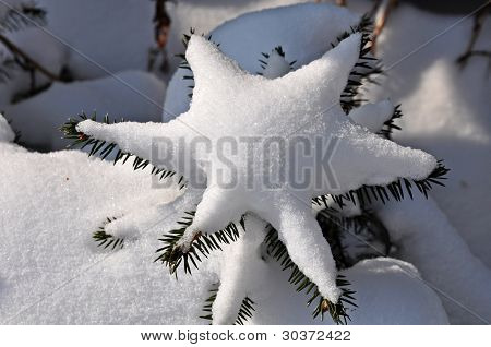 Star from the snow