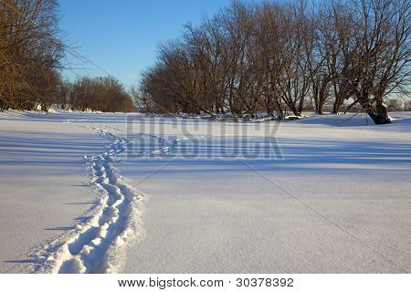 Trail on the Frozen River