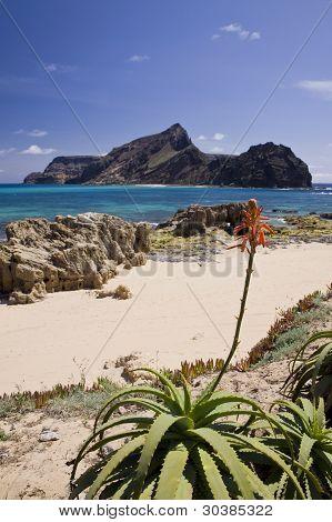 Ilheu Da Cal Island