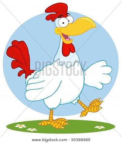 Happy White Rooster Walking