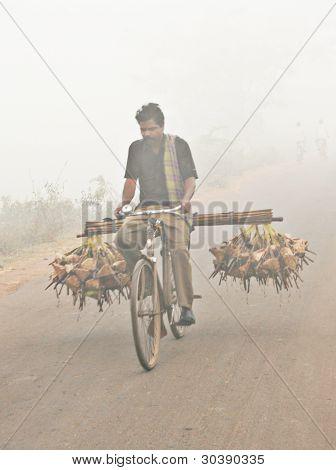 Indian rural rat-catcher