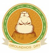 stock photo of groundhog  - Groundhog day - JPG