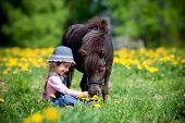 stock photo of bridle  - Child and small horse in field - JPG