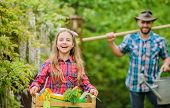 Family Dad And Daughter Little Girl Planting Plants. Day At Farm. Popular In Garden Care. Planting F poster