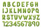 English Or Latin Alphabet From A To Z And Numbers. Vector Kiwi Tropical Fruit Font, Glossy Typeface, poster