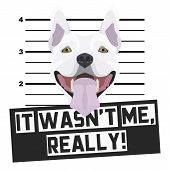 Illustration Mugshot Bull Terrier - The Guilty Dog ​​gets A Police Photo. Dog Lovers And Dog Fans Lo poster