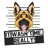 Illustration Mugshot Shepherd - The Guilty Dog ​​gets A Police Photo. Dog Lovers And Dog Fans Love T poster