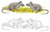 Fantasy Illustration Of Couple Hungry Rats. Colorful And Black And White Page For Coloring Book. Han poster