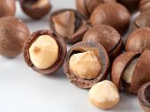 Set Of Macadamia Nuts On White Background With Copy Space. Set Of Macadamia Nuts - Whole Unshelled,  poster