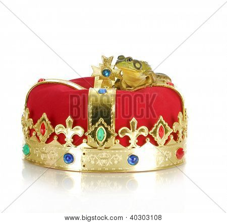 frog sitting on crown isolated on white backgroun