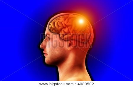 Profile Of Man With Brain