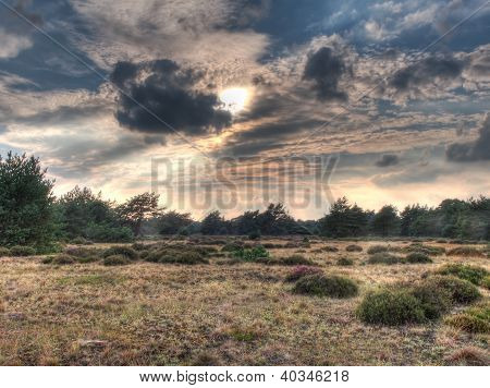 Hdr Image Of Open Heathland