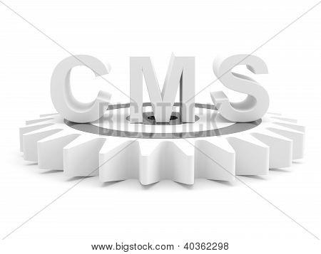 Cms : Content Management System Concept. 3D Model