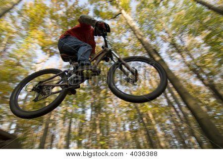 Mtb Dirt Jump