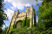 Historic library building in university of Michigan