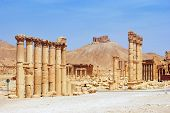 stock photo of euphrat  - ancient Palmyra Syria culture desert destroyed place - JPG
