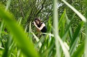 pic of naturalist  - Young woman during a naturalist shooting session - JPG