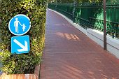 pic of segregation  - Segregated pedestrian path sidewalk with red bricks - JPG