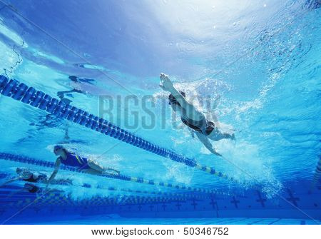 Female swimmers swimming in pool