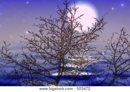 Moon Snow