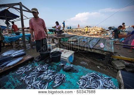 PADANG - AUGUST 25: A fishmonger waits for customers in a stall at an outdoor village market in Padang, West Sumatera, Indonesia on August 25, 2013. Resources from the sea is a major revenue earner.