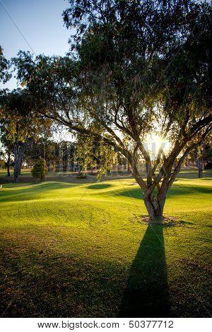 Australian Golf Course