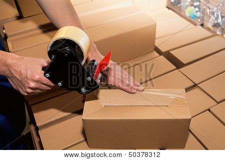 Packing A Carton Boxes