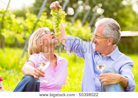 Senior Couple of man and woman having picnic on summer meadow drinking wine in vineyard, he spoils his wife with grapes