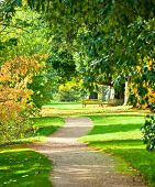 picture of royal botanic gardens  - Footpath at the Royal Botanic Gardens in London - JPG