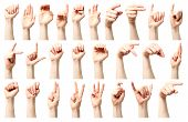stock photo of handicap  - Sign language  - JPG