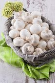 pic of agaricus  - A close up photo of a edible mushrooms known as Agaricus in a basket on a bright solid background - JPG