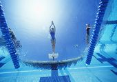foto of arms race  - View of female swimmer diving in swimming pool - JPG