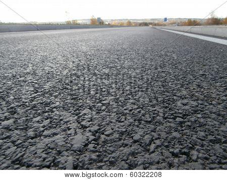 Asphalt road from bug perspective