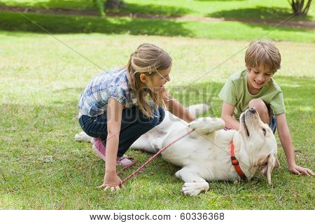 Full length of two kids playing with pet dog at the park