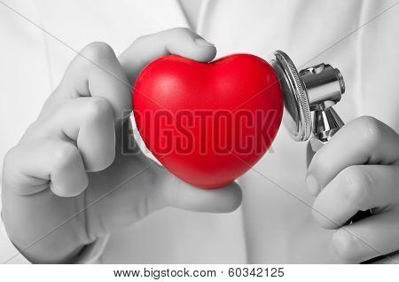 Doctor Examining A Heart