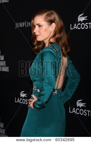 LOS ANGELES - FEB 22:  Amy Adams at the 16th Annual Costume Designer Guild Awards at Beverly Hilton Hotel on February 22, 2014 in Beverly Hills, CA
