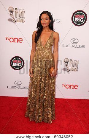 LOS ANGELES - FEB 22:  Naomie Harris at the 45th NAACP Image Awards Arrivals at Pasadena Civic Auditorium on February 22, 2014 in Pasadena, CA