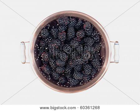 Blackberries in Copper Colander