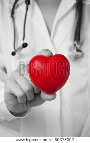 Heart In a Doctor's Hand