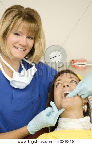dentist - prophylaxe