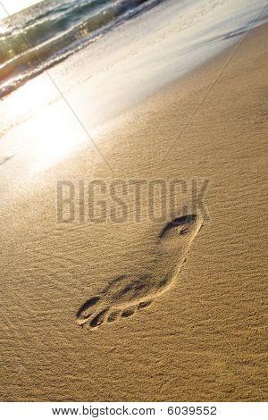 Man Foot Print On A White Sand Beach
