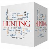 Hunting 3D Cube Word Cloud Concept