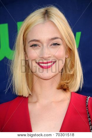 LOS ANGELES - JUL 17:  Caitlin FitzGerald arrives to the CBS-CW-Showtime Summer TCA Press Tour 2014  on July7, 2014 in West Hollywood, CA.