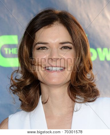 LOS ANGELES - JUL 17:  Betsy Brandt arrives to the CBS-CW-Showtime Summer TCA Press Tour 2014  on July7, 2014 in West Hollywood, CA.